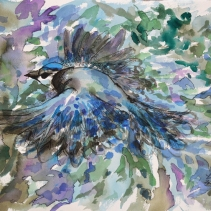 Gerry Jay (Blue Jay)