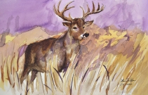 Horned Grasses (Deer)