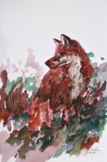 Heart Shaped Fox (Fox)