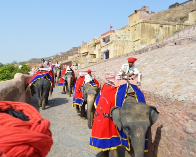 Elephant ride up to Amer Fort